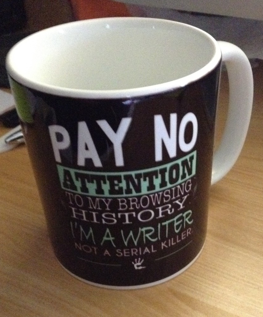 Pay No Attention mug