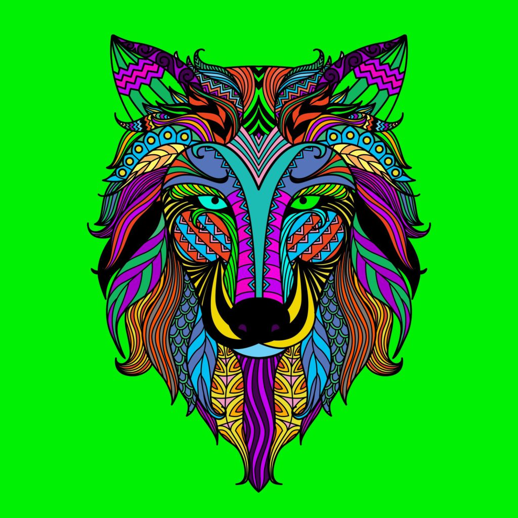 colored wolf