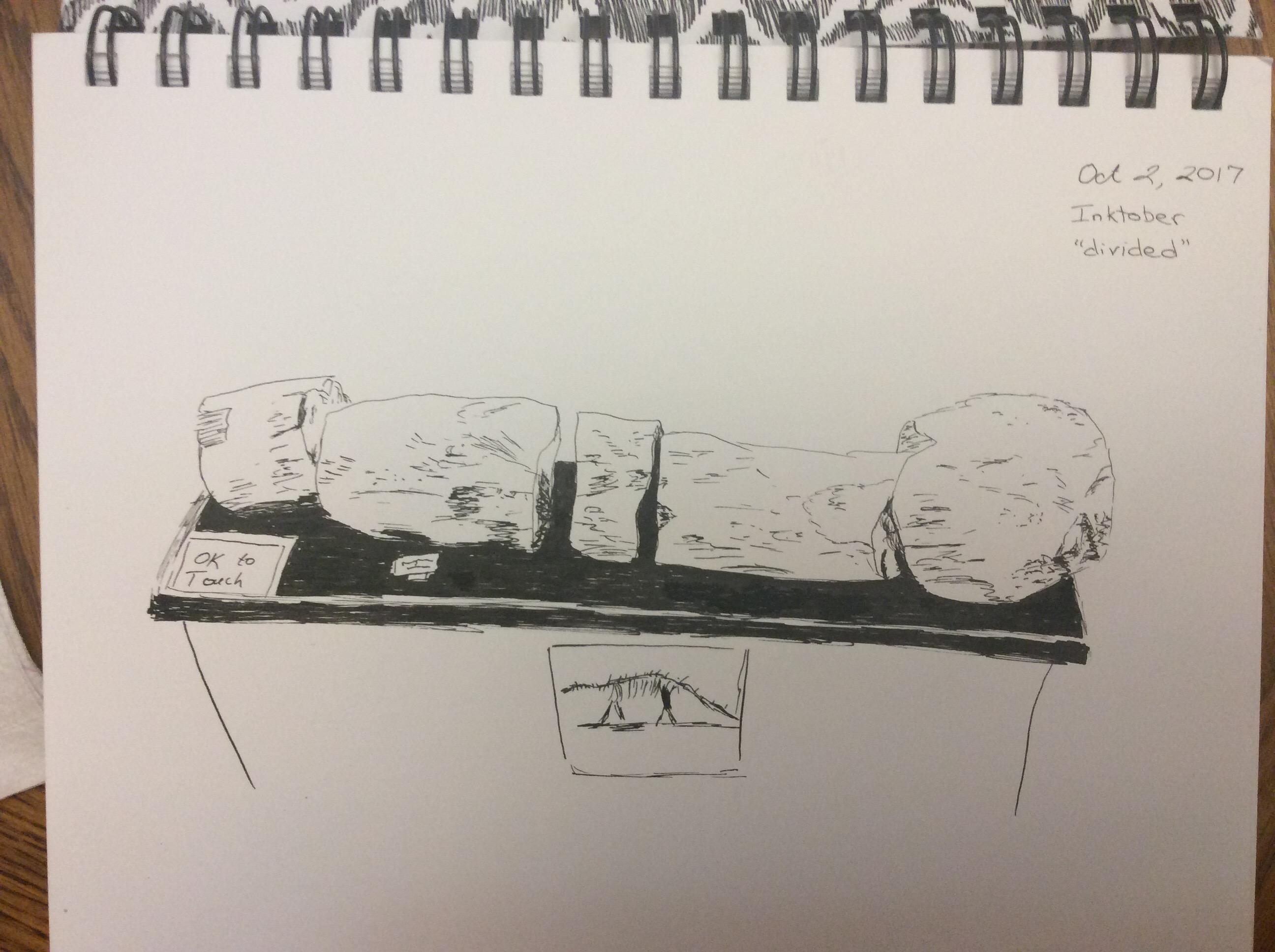 sketch of broken dinosaur fossil