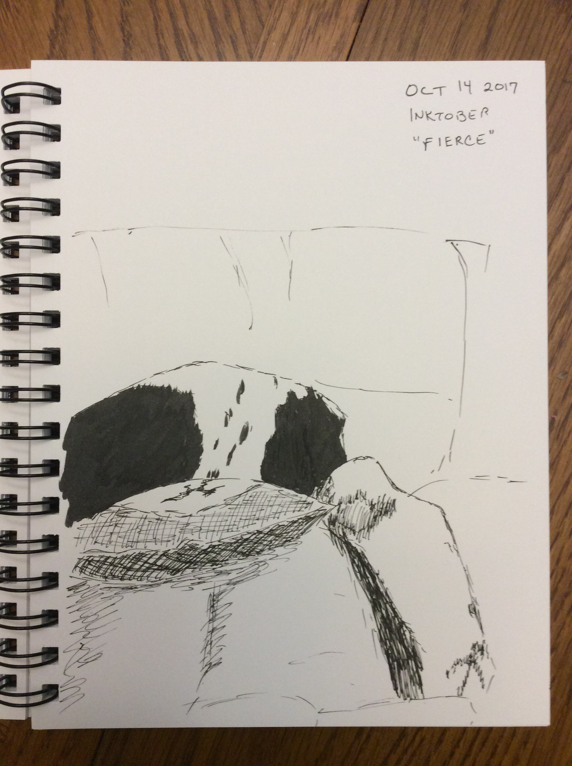drawing of English cocker spaniels