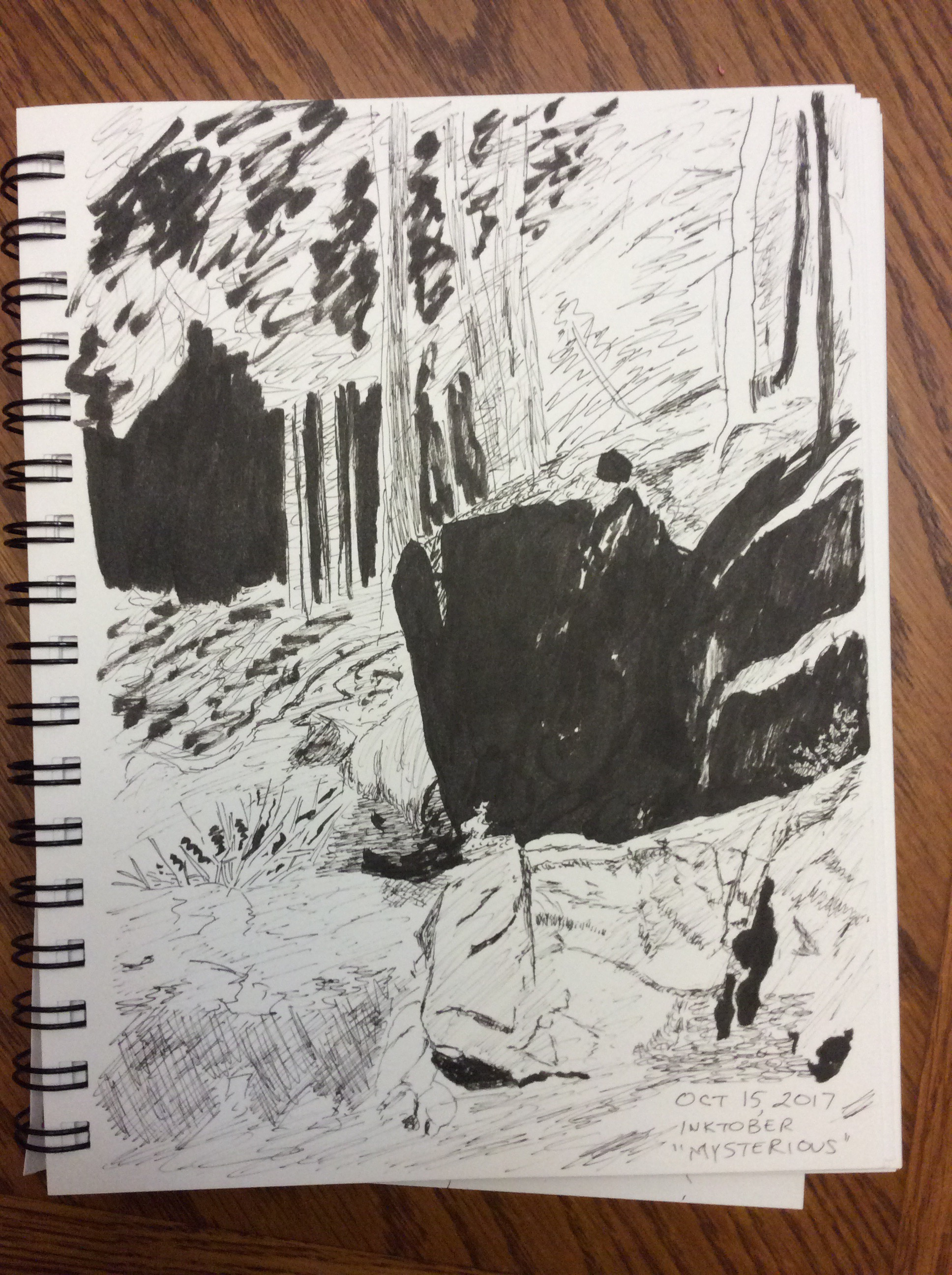 drawing of rocks and trees
