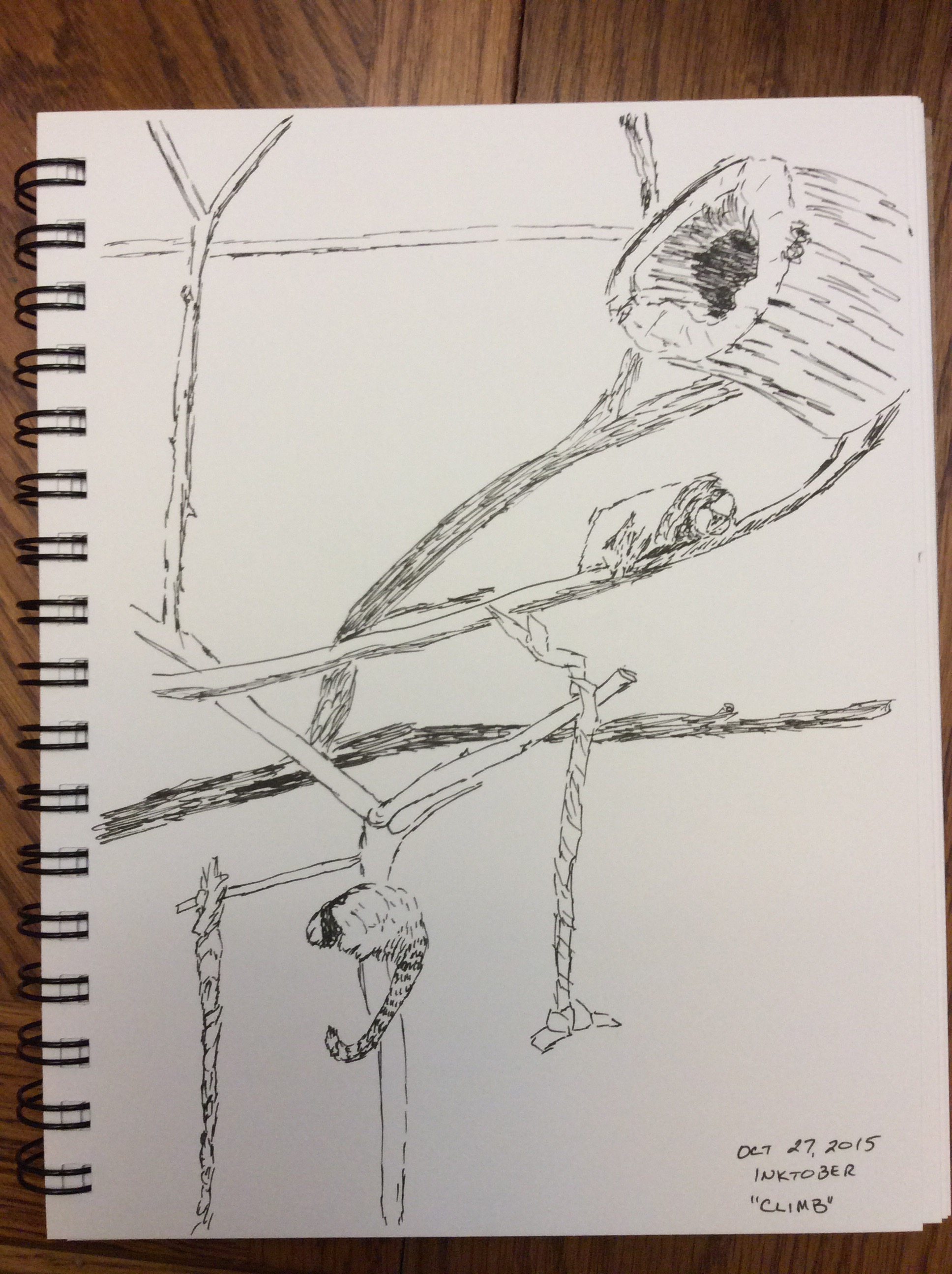 drawing of lemurs