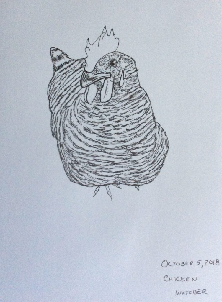 drawing of a barred chicken